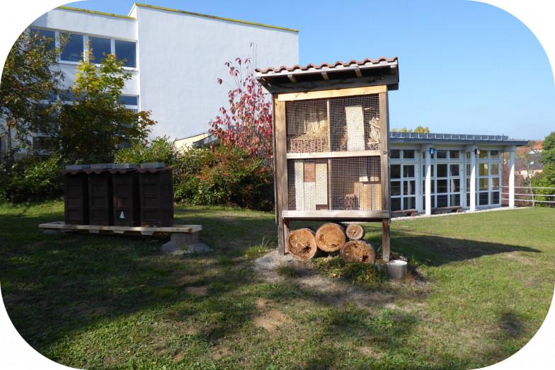 Bienenstöcke und Insektenhotel vom Obst- und Gartenbauverein